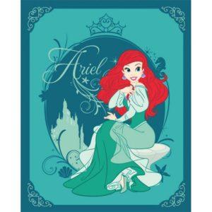 ΚΟΥΒΕΡΤΑ FLEECE Dim Collection 120x150 - Princess