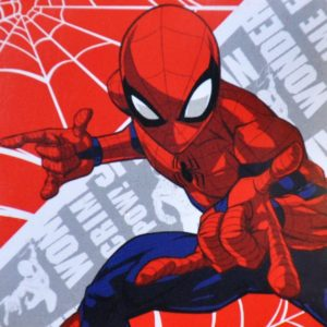ΛΑΒΕΤΑ Disney 30x30 Magic Pack - Spiderman