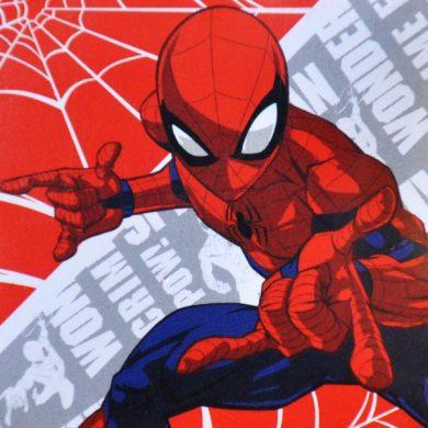 ΛΑΒΕΤΑ Disney 30x30 Magic Pack - Spiderman