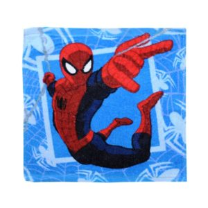 ΛΑΒΕΤΑ Disney 30x30 - Spiderman